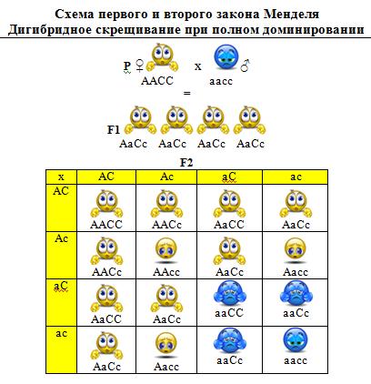 ЕВРОПЕЙСКАЯ И МЕЖДУНАРОДНАЯ ГЕННАЯ СИМВОЛИКА 71774997